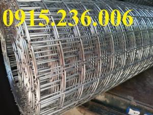 Lưới thép hàn mạ kẽm D1, D2, D3 a25x25, a50x50 giá tốt nhất thị trường