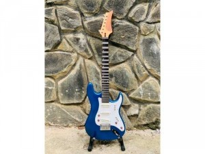 Bán Đàn Guitar Điện Phím Lõm Biên Hoà, Guitar Điện Tân Cổ Nhạc Biên Hoà