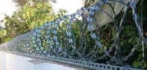 Hàng rào thép gai, dây kẽm gai hình dao