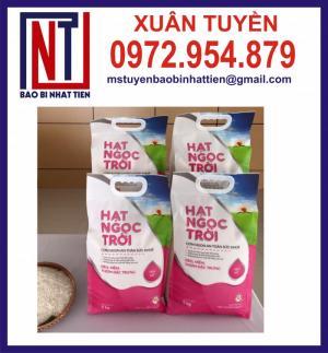 Sản xuất bao bì màng ghép phức hợp đựng gạo 1kg, 2kg, 5kg