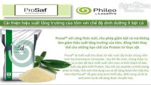 Prosaf - nấm men cao cấp, dinh dưỡng cho tôm