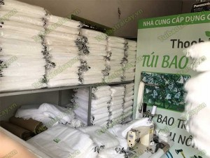 Túi vải bao trái mít giá rẻ