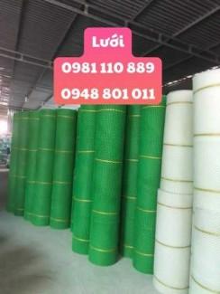 Lưới nhựa ô 1cm ,lưới nhựa xanh ,trắng