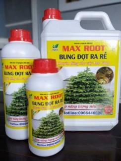 Phân bón Bung đọt ra rễ (Chuyên Mai)