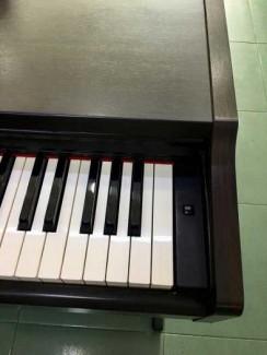 Piano Điện Ydp-131
