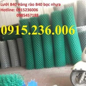 Lưới B40 Bọc Nhựa, Hàng Rào B40 Bọc Nhựa Nhà Sản Xuất Số 1 Miền Bắc