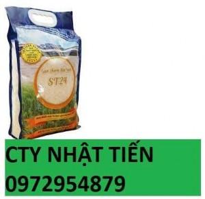Túi Đựng Gạo 5kg Giá Tốt, Chất Lượng Cao