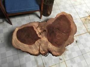 Mặt Gỗ Rừng Tự Nhiên , Siêu Cứng 60cm X 90cm Dày 8cm