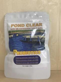 Men vi sinh trị nhớt bạt, diệt tảo và giảm khí độc pond clear