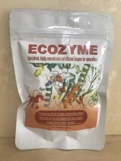 Phân phối ecozyme enzyme cắt tảo và xử lý nước