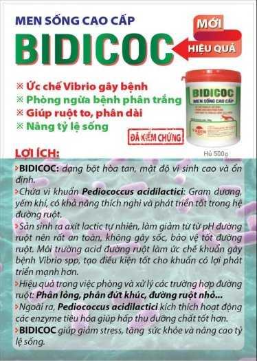 BIDICOC - Men sống cao cấp