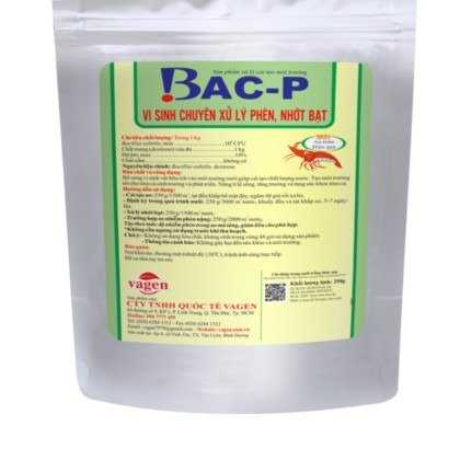 BAC-P - Vi sinh xử lý phèn ao nuôi tôm