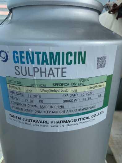 Gentamycin nguyên liệu 98% dùng trong thú y và thủy sản