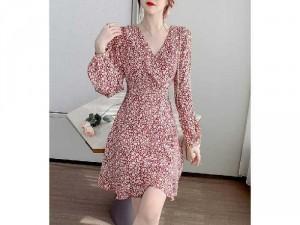 Đầm nữ thiết kế cổ V hoạ tiết dài tay SG