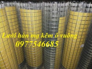 Lưới hàn mạ kẽm ô vuông mắt 25x25, 35x35, 50x50 dây 2ly,2,5ly,3ly,4ly