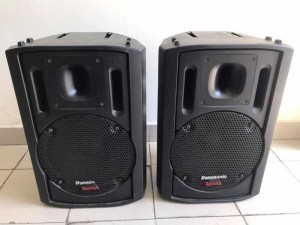 Loa Ramsa WS-AT200 bass 30