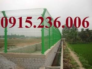 Hàng rào lưới thép hàn D4, D5, D6, mạ kẽm, sơn tĩnh điện giá tốt
