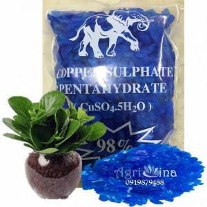 Đồng sulphate - phèn xanh - CuSO4.5H2O