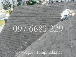 2021-01-17 17:10:48  5  Tấm lợp San gobuild Roof 260,000