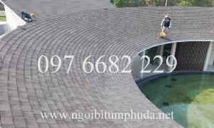 2021-01-17 17:10:48  3  Tấm lợp San gobuild Roof 260,000