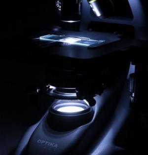 2021-01-18 15:17:25  3  Kính hiển vi sinh học chuyên dụng phòng thí nghiệm 12,000,000