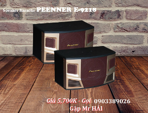Loa Karaoke, Nghe nhạc Peenner E-9218 công suất thật đến 450W