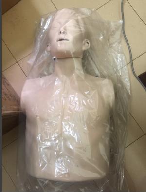 Mô hình huấn luyện cấp cứu tim phổi Nurugo L330