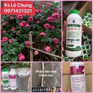 Phân bón hữu cơ chuyên dụng cho hoa hồng