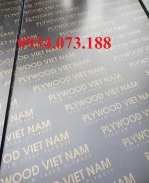 Ván ép cốt pha phủ phim Plywood VietNam