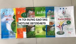 Túi gạo 5kg PA/PE, in túi đựng gạo 5kg xuất khẩu