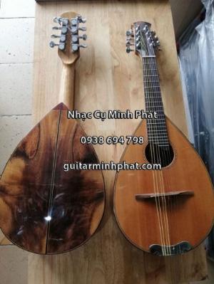Địa chỉ bán đàn mandolin giá rẻ chất lượng nhất khu vực gò vấp tphcm