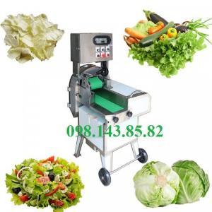 Máy thái rau củ, máy cắt hành, cắt rau, cắt lát các loại củ