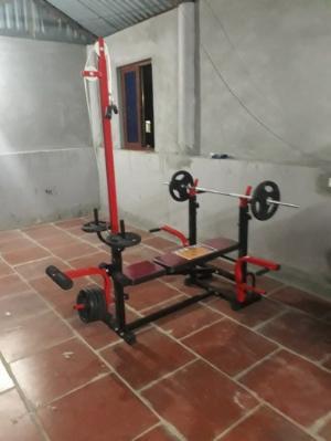 Giàn tạ tập gym