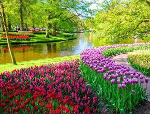 2021-04-13 08:50:25  3  Tranh cảnh thiên nhiên - tranh gạch 3d cảnh thiên nhiên - MD33 1,200,000