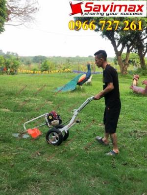 Máy cắt cỏ đẩy tay, động cơ Honda Gx35