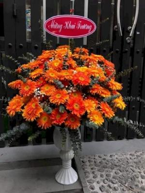 Bình hoa chúc mừng khai trương hồng phát hoa đồng tiền màu cam - LDNK02