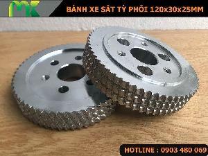 Bánh xe tỳ phôi bánh xe sắt 120x30x25mm