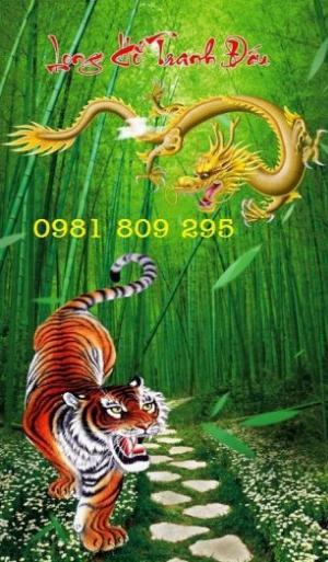 Tranh rồng hổ tranh đấu - gạch tranh 3d