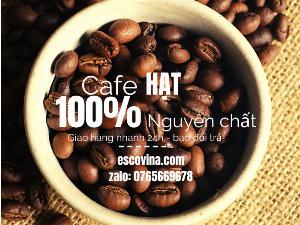 Bán cà phê nguyên chất uy tín chất lượng cao