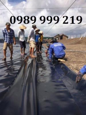 Nylon đen hdpe lót trải bãi chôn lấp,hố biogas,nhà xưởng-suncogroupvn
