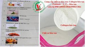 CUng cấp bột collagen hòa tan