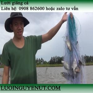 Lưới giăng cá ba màn Nguyễn Út