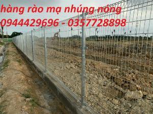 Hàng rào mạ nhúng nóng D5 a 50 x 200