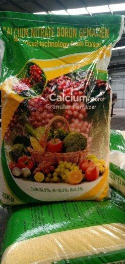 Calcium nitrate boron (CA(NO3)2- Trung Quốc