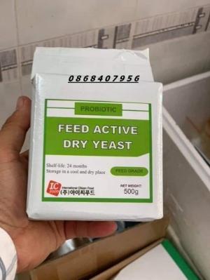 Men tiêu hóa Hàn Quốc Probiotic