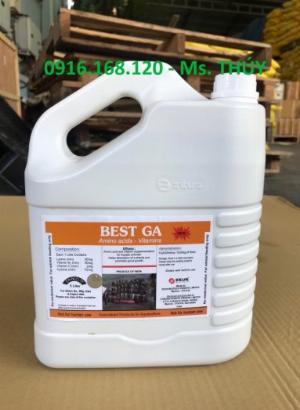BEST GA: Bổ gan thảo dược dạng nước