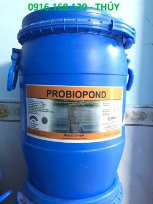 PROBIOPOND - Vi sinh bột nguyên liệu Ấn Độ giúp loại bỏ khí độc trong ao nuôi