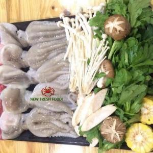 Bạch Tuộc Baby - New Fresh Foods