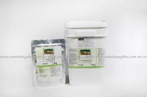 Men vi sinh xử lý nước thải ngành giấy và bột giấy