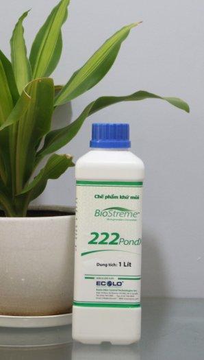 Xử lý mùi hôi cho các ao hồ tù đọng BioStreme222PONDX